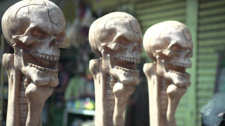 Superstitious Minds Skulls
